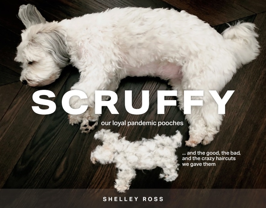 Scruffy by Shelley Ross Book Cover